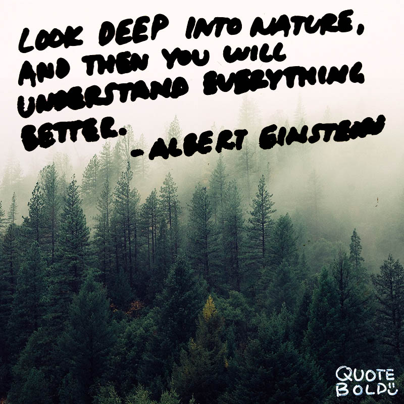 51 Best Nature Quotes To Inspire Your Day W Images Quote Bold